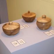 Mostra concorso 2011